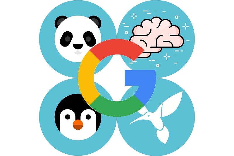 الگوریتم های سئو گوگل و بهترین واکنش دربرابر آنها