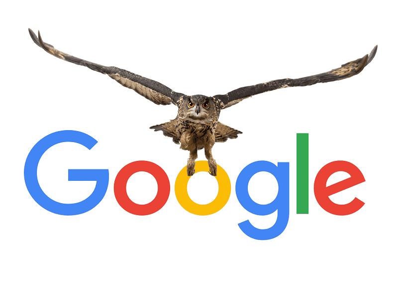 آشنایی با پروژه جغد گوگل